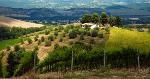 italy-countryside-1