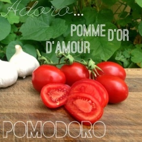 Word of the Day: Pomodoro