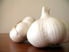 The table cloth is not the garlic: Italian Tongue Twisters PartII